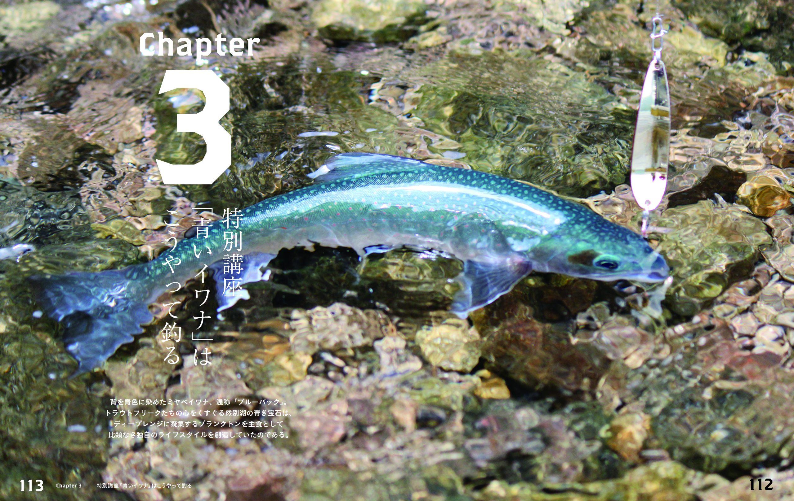 feat.鱒 本文P112-113特別講座「青いイワナ」はこうやって釣る